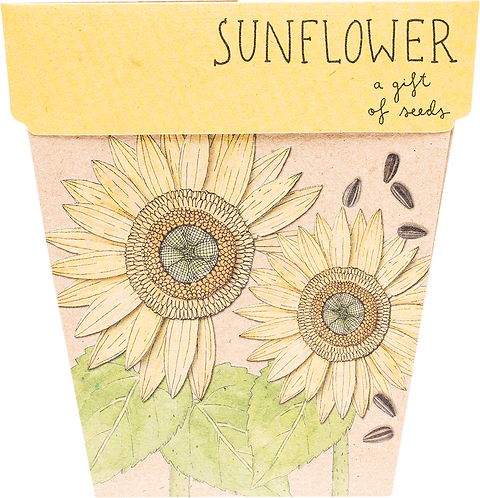 Sow n' Sow Gift of Seeds - Sunflower