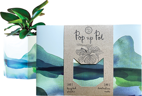 Sow 'n Sow Pop Up Pot - Mountain