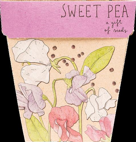 Sow n' Sow Gift of Seeds - Sweet Pea