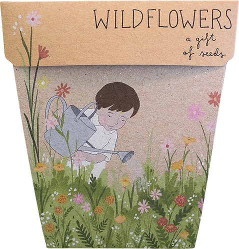 Sow n' Sow Gift of Seeds - Wildflowers