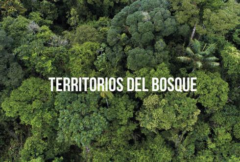 TERRITORIOS.jpg