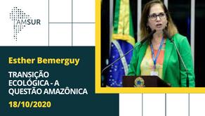 Domingueira AMSUR: Transição Ecológica - A Questão Amazônica