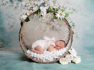 photographe bébé Naissance Haute-Marne