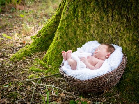 naissance Cha Clik Photo