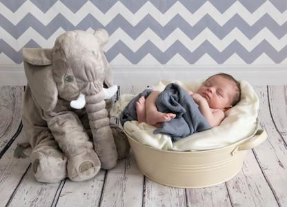 photographe bébé Naissance Gray