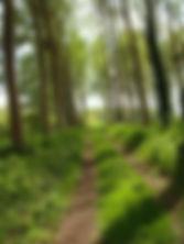 Chemin balade