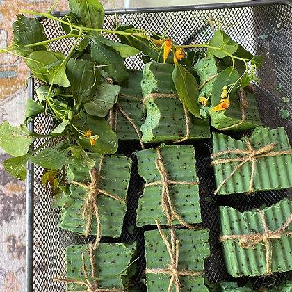 Poison Ivy Treatment Soap