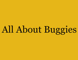 all about buggies.jpg
