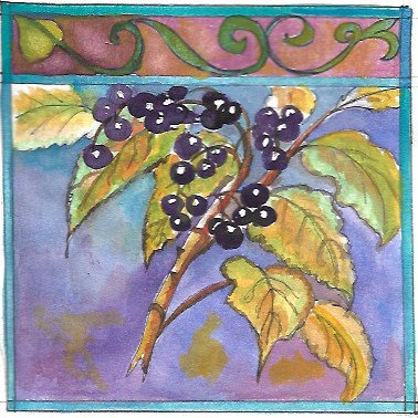 Elderberry Glycerite (NO ALCOHOL)