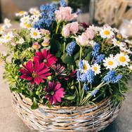 Bepflanzter Korb mit Frühlingsblumen