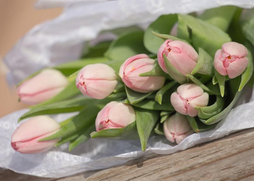 Aktuell Tulpen rosa Art of Flowers Zürich