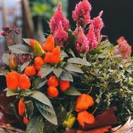 bild_arrangement_herbst.jpg
