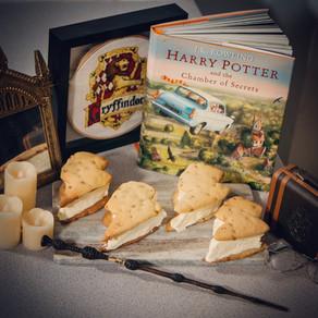 Harry Potter Ice Cream Sandwich Recipe | My Harry Potter Kitchen II (Recipe #6)