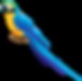 Blue_Parrot_PNG_Clipart-495.png