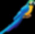 Bird%202_edited.png