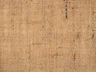 世界最古の繊維「麻」の歴史