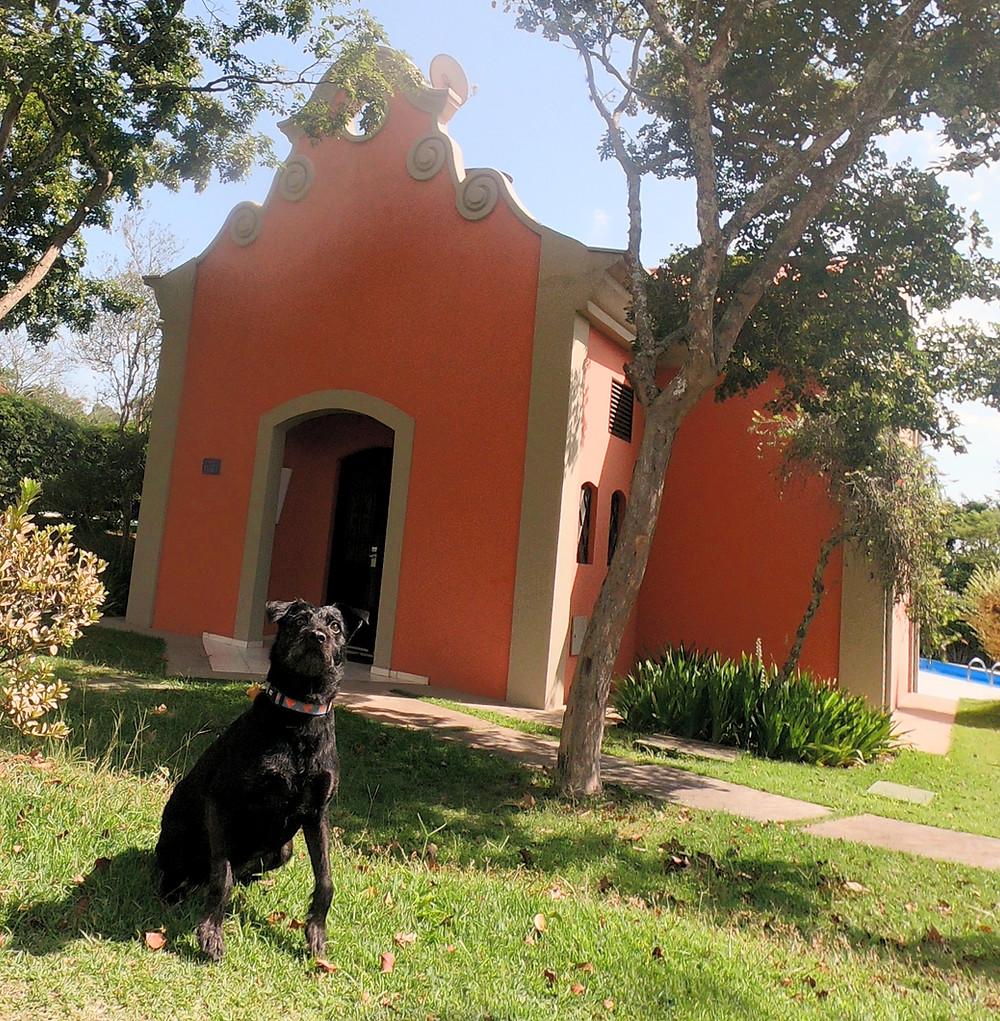 hotel pet friendly, villa rossa, viagem com cachorro, quarteto fofastico