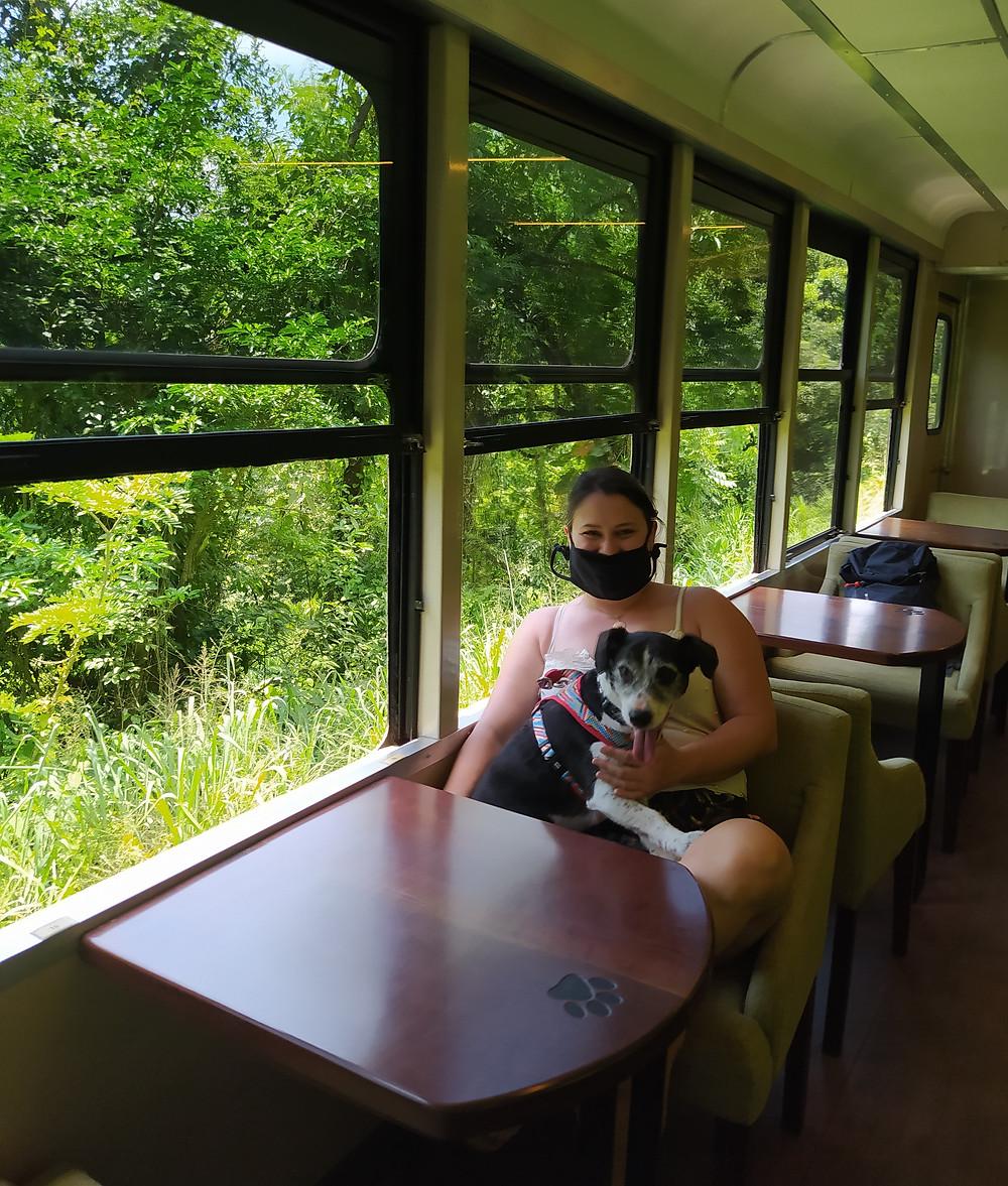 trem de luxo brasil, trem com cachorro, Morretes, Serra Verde Express, viagem de trem luxo, vagão pet friendly