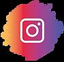 Instagram da Cãomigo.png