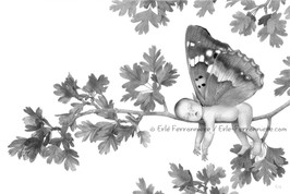 Bébé fée dormant sur une branche (dessin) © Erlé Ferronnière