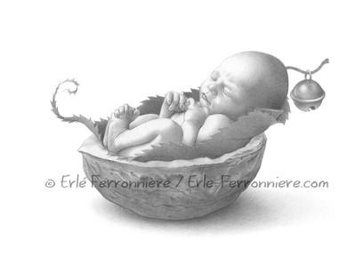 Bébé fée dormant dans une noix (dessin) © Erlé Ferronnière