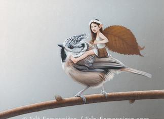 La Fée et la mésange huppée / The Fairy and the crested tit…