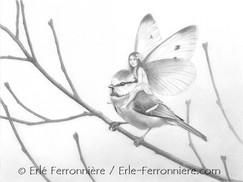 La fée sur la mésange bleue (dessin) © Erlé Ferronnière