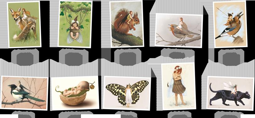 Pack cartes postales n°2