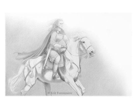 Cavalière 1