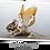 Thumbnail: La fée sur la souris