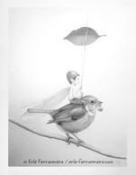 Le pixie sur le rouge-gorge (dessin) © Erlé Ferronnière