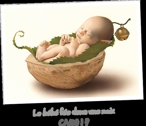 Le bébé fée dans une noix