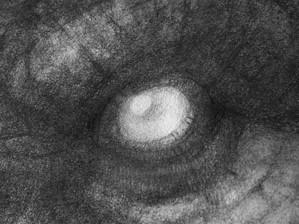 L'Univers des Dragons - Chasseuse de dragons (détail) © Erlé Ferronnière