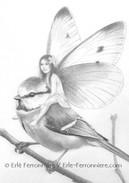 La fée sur la mésange bleue (dessin - détail) © Erlé Ferronnière