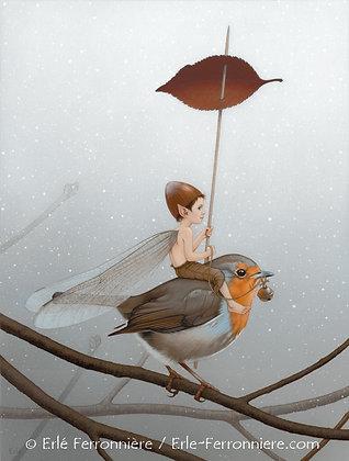 """Le """"fé"""" sur le rouge-gorge / The fairy riding a robin"""