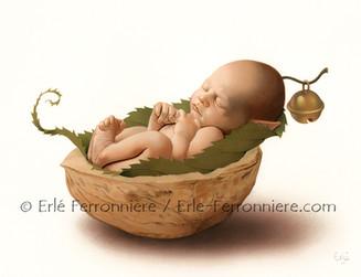 Bébé fée dormant dans une noix © Erlé Ferronnière