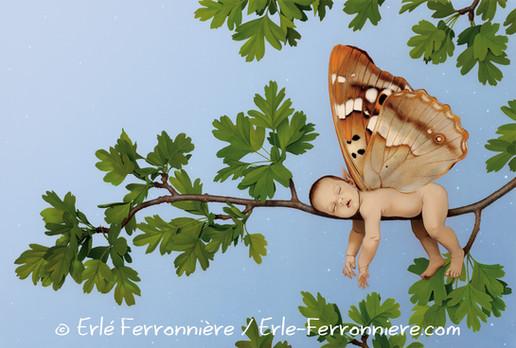 Bébé fée dormant sur une branche © Erlé Ferronnière