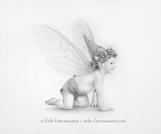 Bébé pixie à quatre pattes © Erlé Ferronnière