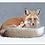 Thumbnail: La fée et le renard sous la neige