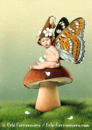Bébé fée sur un champignon © Erlé Ferronnière
