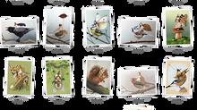 10 nouvelles cartes postales ! / 10 new postcards !