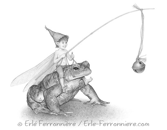 Le pixie sur un crapaud / The pixie riding a toad
