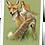 Thumbnail: La fée sur le renard
