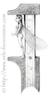 Fée papillon © Erlé Ferronnière