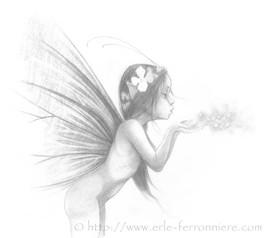 Fée soufflant de la poussière de fée - Pixie dust © Erlé Ferronnière