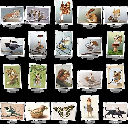 Pack cartes postales n°3