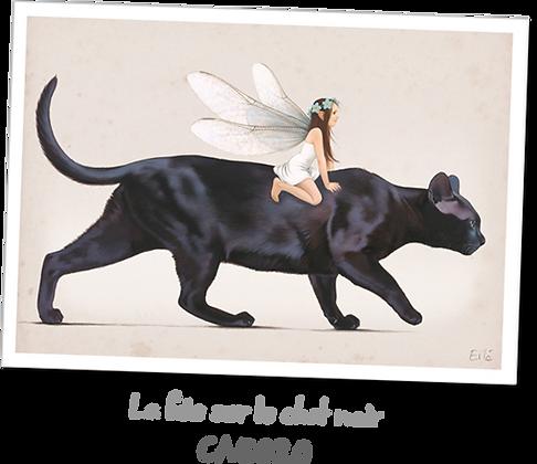 La fée sur le chat noir