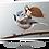 Thumbnail: La fée sur la mésange huppée