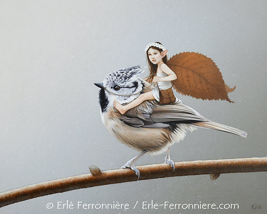 La Fée et la mésange huppée / The fairy and the crested tit