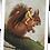 Thumbnail: La fée sur l'écureuil